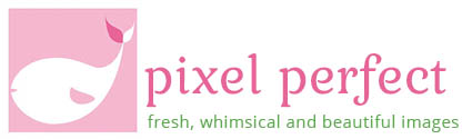 Pixel Perfect Nanticket Photography Logo